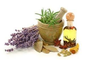 medical-herbalism