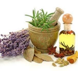 medical herbalism cornwall
