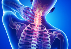 osteopathy in Falmouth